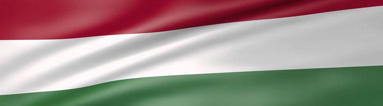 Hungarian Classic Men