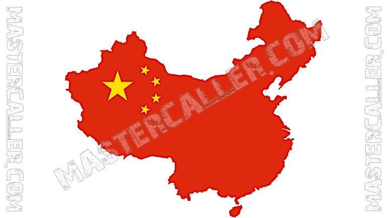 China Global Cup - 2004 Logo